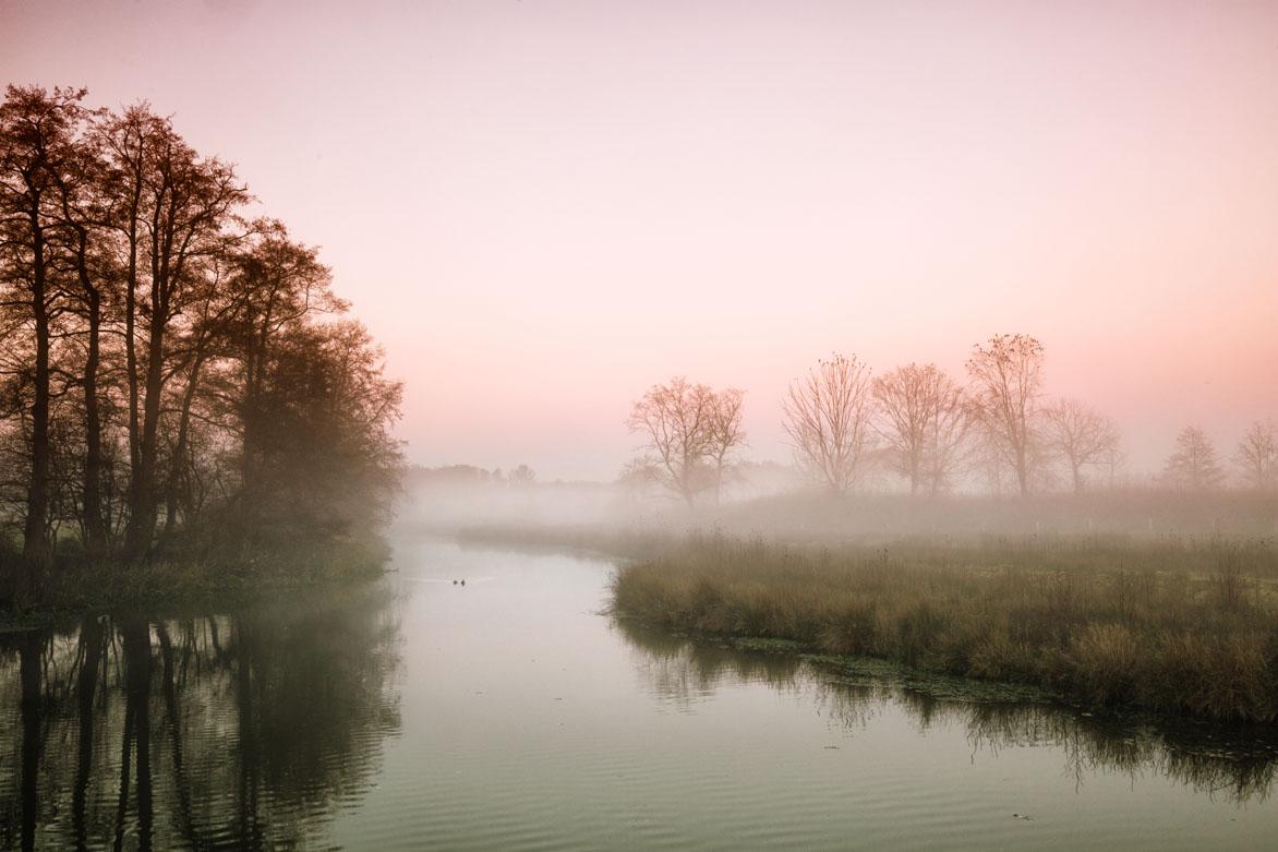 Witte Wieven – Fog