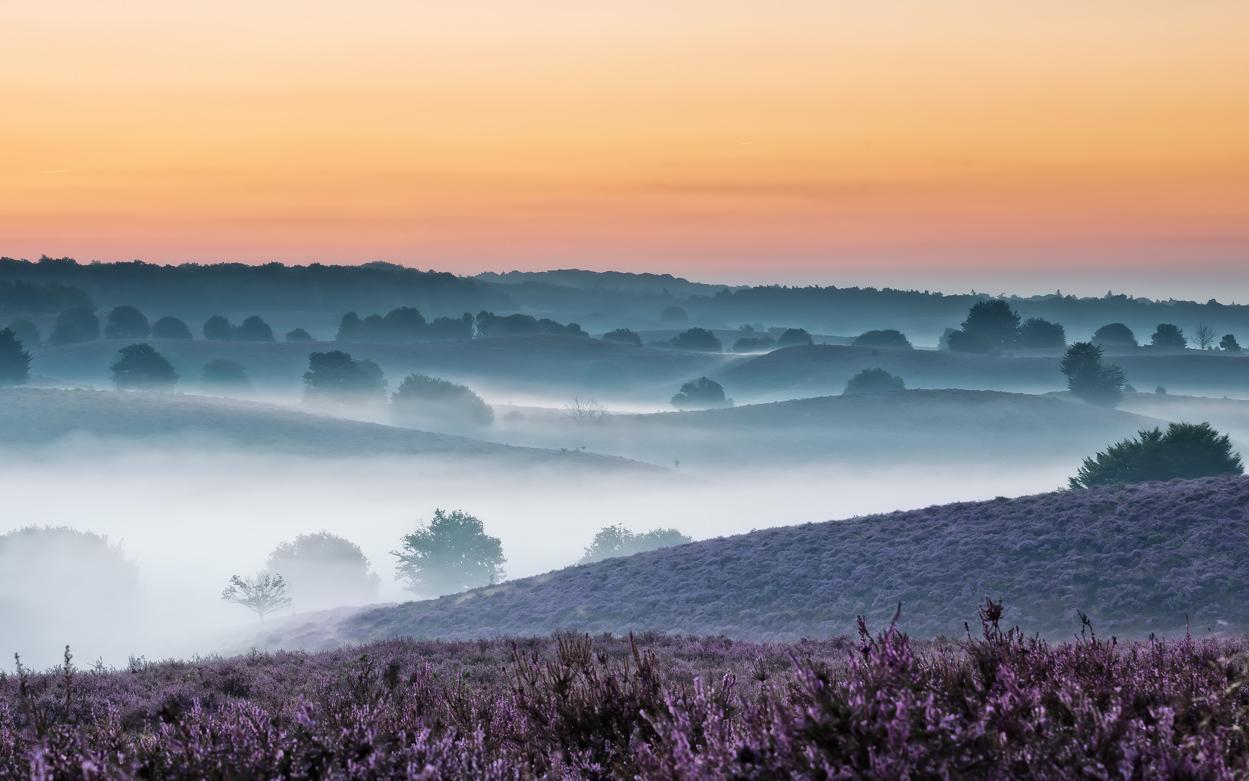 Mistige zonsopkomst bij de Posbank – Misty sunrise Posbank